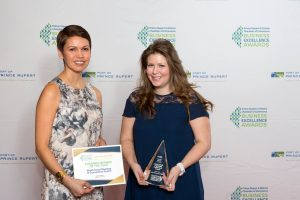 chamber of commerce award 2017